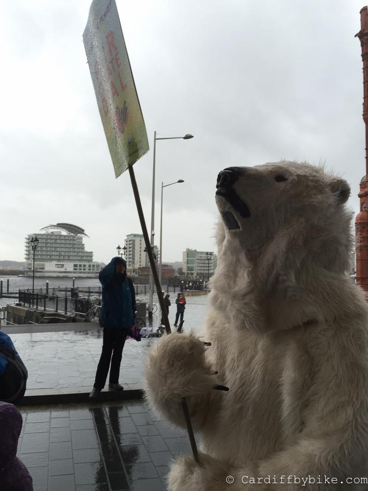 Polar bear, Stop Climate Chaos Cymru