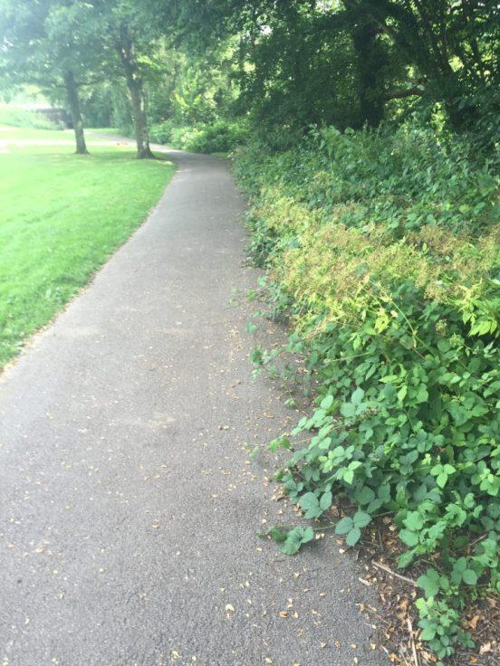Hailey Park